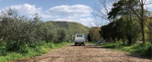 中原観光農園-畑の風景